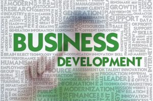 Why is Business development Source important?